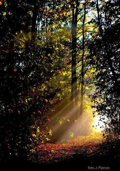 ,,jesień na Smutnej Górze,, - pozzdrawiam Wszystkich :))