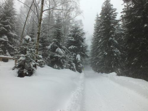 """12.03.2016 rok """"Na Grzegorza idzie zima do morza""""-a w Karkonoszach zima ma się dobrze :)"""