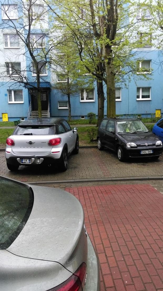 Mistrzowie parkowania cdn