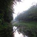#strumień #mrok #ponure #mroczne #mgła